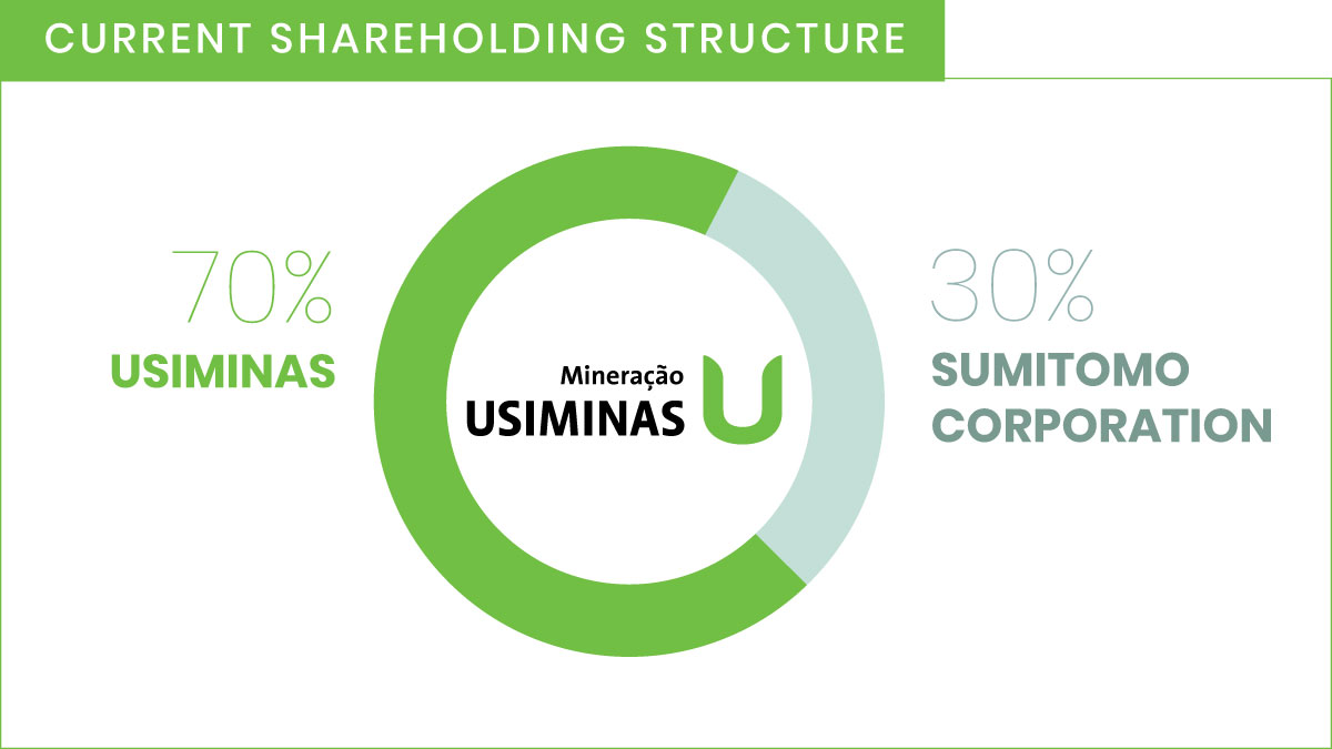 Current shareholding structure