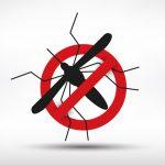 O combate à dengue segue na pandemia
